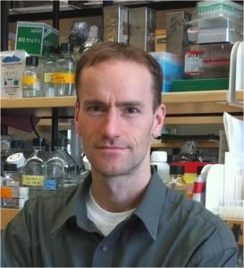 Duane R. Wesemann, MD, PhD