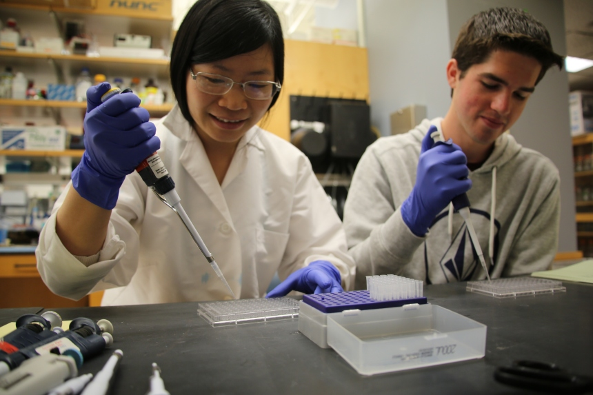 Pei Tong, PhD, and Colby Devereaux of the Wesemann lab in the Division of Rheumatology, Immunology and Allergy.